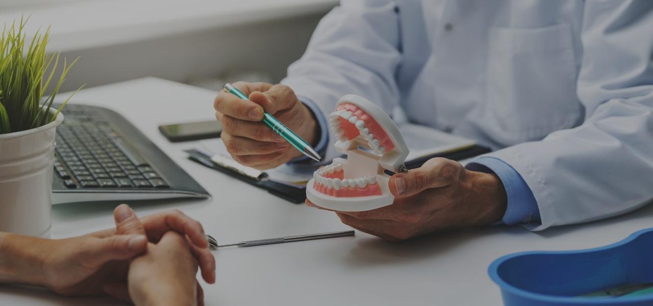 Dentysta wskazujący nasztuczną szczękę